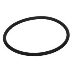 AtlasFiltr кольцо DP